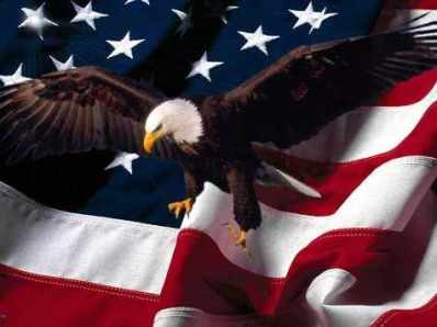 Veterans-Day-USA