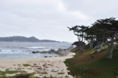 Big Sur Monterey, CA (4)