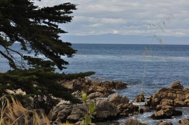 Big Sur Monterey, CA (5)