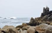 Big Sur Monterey, CA (6)