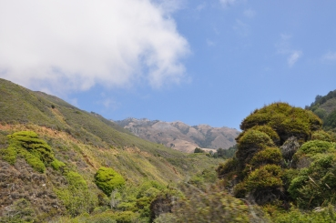 California (4)