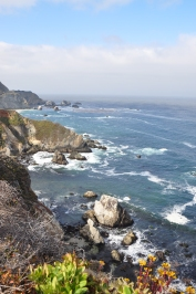 California West Coast (4)